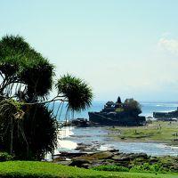 ボロブドォ−ル遺跡・バリ島6日間の旅