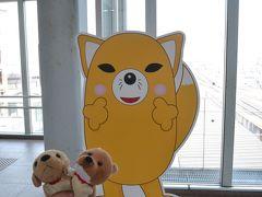 【青春18きっぷの旅】東海道線・飯田線で豊川稲荷へ。狐を見て、いなりを食べて、観光気分もりもり。