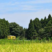 ムーミン列車が走り、不思議な魅力いっぱいの「いすみ鉄道」(千葉)
