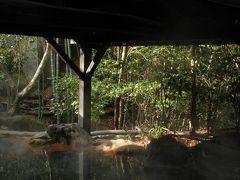 温泉めぐり(1) 正月休みを利用して熊本県の黒川温泉へ・・・
