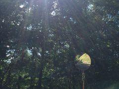 「こくや旅館」4泊5日長野の旅3日目 これまたシブい鹿教湯温泉!飲める温泉のある宿