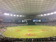 西武ドームで野球観戦 福が福を呼んだ西武ライオンズ対日本ハム戦