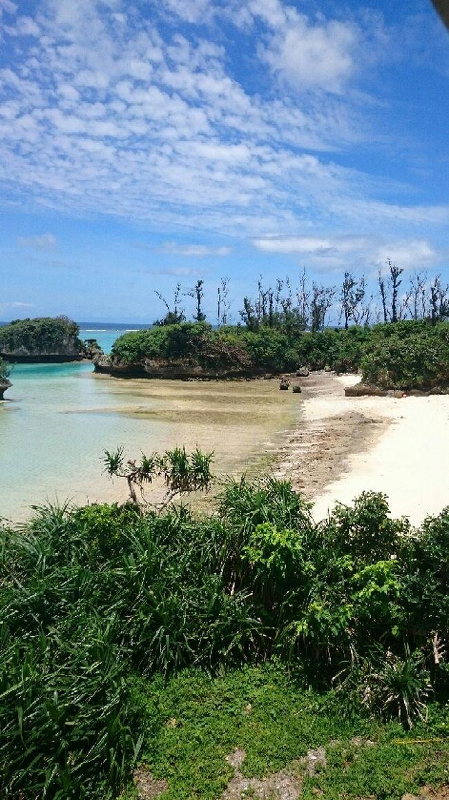 沖縄の今帰仁という場所に行き、あまみく というところに宿泊しました。<br />美ら海水族館よりもさらに北東にある宿です。<br />1日に2組しか泊まれない宿ですが、目の前に世界一綺麗な沖縄のエメラルドグリーンが広がり、<br />プライベートビーチを独占できます。<br />大規模なリゾートホテルに泊まるツアーよりも自分で航空券と絶景の宿を予約して、プライベート感を満喫できる旅にできたことは生涯の思い出に出来ました。<br />大規模なホテル開発によって沖縄本島は珊瑚にダメージを与えてしまいますが、<br />沖縄本来の持つ雄大な自然は是非とも残してもらいたいと思います。