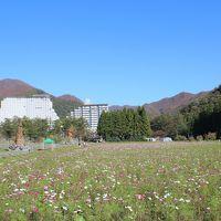 猪苗代・磐梯山・五色沼観光