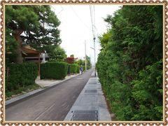 緑のサワラ生垣と、黒板塀が美しい・・・弘前の仲町武家屋敷街
