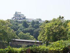 夏旅☆4歳児と南紀白浜3泊4日≪和歌山城と貴志川線≫