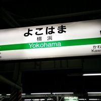 2015年8月 青春18きっぷのたび第二弾&ふるさと割第四弾  その1 出発と到着 横浜・平塚