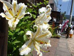 優雅な夏の避暑♪ Vol3 ☆旧軽井沢:ゆったりとショッピングやカフェタイム♪