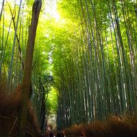 娘と2人で京都旅行④3日目 嵐山渡月橋~嵯峨野竹林の小径