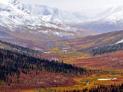 オーロラとツンドラ紅葉を求めて極北の大地ユーコンを行く (2)ツンドラ紅葉編