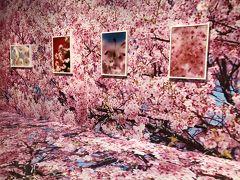 フラメンコ仲間とビアガーデン&札幌芸術の森蜷川実花展回想録よさこいカフェ巡りニシクルカフェ西区の話題のソフトクリーム