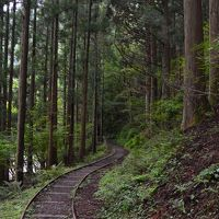 京都美山かやぶきの里・森の中の廃線(芦生研究林)
