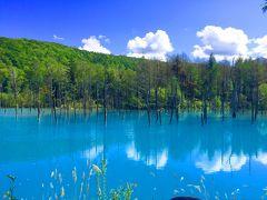 北海道 青い池と虹とエゾリスとの出会い