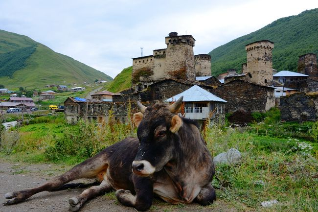 この旅の目的地、ヨーロッパ最後の秘境?世界遺産の村「ウシュグリ」を観光。<br />曇天の薄暗い村を彷徨うと、グルジア正教の賛美歌が聴こえてきた!<br />馬も走る、静かな村は、ヨーロッパ人のトレッキング天国となっていた。<br />果たして、ここは秘境なのか。。。人口以上の観光客が山を目指して訪れている。<br /><br />8/4羽田0:30→5:30Doha7:30→13:30Tbilisi Hotel Tbilisi Central by Mgzavrebi <br />8/5 Tbilisi→Mestia(10h 30L)  Hotel Chubu<br />8/6 Mestia→Ushguli(片道2h 往30L復20L) Hotel Chubu ★<br />8/7 Mestia→Kutaisi(4h25L)→Akhaltsikhe(4h12L) Hotel Grand Palace<br />8/8 Akhaltsikhe→Vardzia→Sapara monastery(4h70L) Hotel Grand Palace<br />8/9 Akhaltsikhe→Tbilisi(3h6L) トビリシ旧市街散策 Hotel Sharden Villa<br />8/10 トビリシ旧市街散策 Sharden Villa<br />8/11Tbilisi→Stepantsiminda(Kazbegi) (現地ツアー75+12L) Sharden Villa<br />8/12 トビリシ旧市街散策 空港 20:00→23:59Doha<br />8/13 Doha7:10→22:45羽田