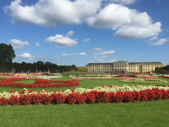今年の9月は5連休(=´∀`)人(´∀`=)<br /><br />ウィーン最大の観光地、世界遺産・シェーンブルン宮殿。宮殿内部の豪華さもさることながら、今回の旅はお天気に恵まれ、素晴らしい景色を見ることができました。<br /><br />1日目<br />http://i.4travel.jp/travelogue/show/11054796<br /><br />2日目<br />http://i.4travel.jp/travelogue/show/11055034<br /><br />3日目<br />http://i.4travel.jp/travelogue/show/11055310<br /><br />4日目(5泊7日)<br />★世界遺産・シェーンブルン宮殿<br />★グロリエッテ<br />★ユリウス・マインル<br />★クアサロン・コンサート<br /><br />5日目<br />http://i.4travel.jp/travelogue/show/11056241