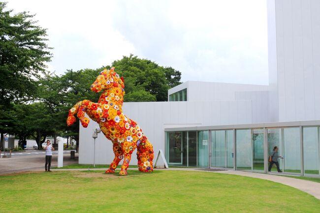 【表紙の写真】十和田市現代美術館のシンボル<br />「フラワー・ホース」<br /><br />2015年 夏の青森ツアー 最終章<br /><br />青森市内にある県美とともに観てみたかった十和田市現代美術館<br /><br />規模は大きくないし、十和田市という少しアクセスが不便な立地であったけれでも、素晴らしい現代美術館でした。<br />目に触れるだけでなく、ちょこっと覗いてみたり、歩いてみたり、触れてみたり(できるのは一部) 青森の県美だけでなく、金沢の21世紀美術館に比べてもこちらの方が好きです!<br /><br />TOWADA ART CENTER<br />(http://towadaartcenter.com/web/towadaartcenter.html)<br /><br />★2015夏の青森旅行シリーズ<br />【1/8】初の『青森ねぶた祭り』<br />http://4travel.jp/travelogue/11063382<br /><br />【2/8】ねぶた期間の青森ベイエリア周遊<br />http://4travel.jp/travelogue/11063454<br /><br />【3/8】りんご狩りと八甲田山<br />http://4travel.jp/travelogue/11063836<br /><br />【4/8】田舎舘町のスター・ウォーズ田んぼアート<br />htp://4travel.jp/travelogue/11063770<br /><br />【5/8】歴史と伝統ある十和田ホテル<br />http://4travel.jp/travelogue/11056653<br /><br />【6/8】十和田湖遊覧<br />http://4travel.jp/travelogue/11077379<br /><br />【7/8】奥入瀬渓流と星野リゾート『奥入瀬渓流ホテル』<br />http://4travel.jp/travelogue/11056645<br /><br />【8/8】十和田市現代美術館 本当に良かった<br />http://4travel.jp/travelogue/11056643<br />