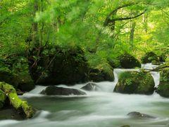 観て食べて登って歩いて満喫した東北旅行4日間の旅~其の四、青森県 奥入瀬渓流 ~渓流散策の旅~