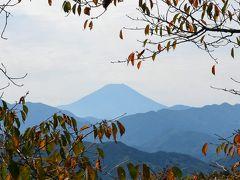 高尾山健康登山(4)  稲荷山コースー奥高尾ー高尾山ー琵琶滝