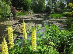 パリ~ノルマンディ・ドライブ #14 - ジヴェルニー、モネの水の庭 睡蓮の池