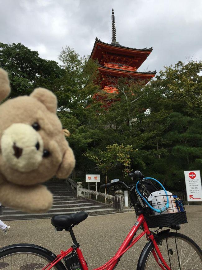 クルマでは渋滞が多い京都では、電動アシストの自転車がオススメです。<br />今回、初めてそれを体験してびっくりの素晴らしさ。<br />平地は、もちろん、坂道もスイスイ。<br />どんな細い道もショートカットに使えるし。<br />最高でした。<br />ハイドラというのは、ハイタッチドライブという、チェックポイント集めのアプリで、全国8万人のユーザーがいます。<br />チェックポイントには観光地、駅、有名スポットなど2万カ所が収録されています。<br />文中、「緑化」というのは、ハイドラでは「訪問したポイントが緑になる」ということから来ています。<br />ハイドラについてはこちら--&gt;http://mackenmov.sunnyday.jp/macken/travel_japan/hidra/hidra.html<br /><br /><br />よければこちらも<br />日本一周ホームページ<br />http://mackenmov.sunnyday.jp/macken/travel_japan/index.html<br /><br />http://mackenmov.sunnyday.jp/macken/travel_japan/2015travel/201509travel/1509kyoto/1509kyoto1.html