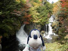 グーちゃん、秋の本合宿で日光へ行く!(ニュー浅は、我らの原点!編)