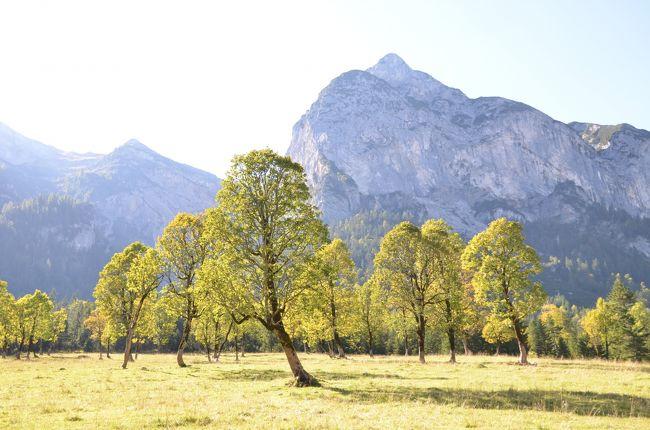 チロルの大自然と小さな村【9】隠れた黄葉スポット、アーホルンボーデン