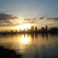 淀川河川敷で野鳥探し&魚釣り