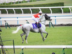 京都競馬場でGI観戦!! 天皇賞(春)2015