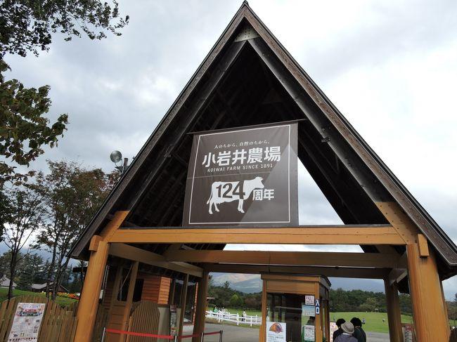 盛岡の旅は、去年の12月以来です。<br />今回も従姉妹に逢いに行くのが目的ですが、観光もかねて・・・<br />とはいうものの、親戚一同4人で、ということは、やはりあそこしかない!小岩井まきば園と、いろいろ。<br />今回は、一日目は小岩井と、城址公園を中心に見てみました。<br />二日目は、盛岡動物公園、一緒に行った従姉妹の希望です。いろんな、動物にあえて、楽しかったです。<br />動物園なんて子供が小さい時に行ったきりですが、結構大人でも楽しめました。