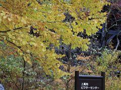 秋色に染まる信州へ(中編)−上高地−