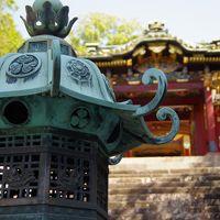 東海道 家康公の足跡を訪ねて① ~久能山東照宮参拝と三保の松原・日本平から富士山を鑑賞~