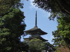 秋の優雅な北陸と信州の旅♪ Vol19(第2日目午前) ☆羽咋市:「妙成寺」の美しい庭園から「五重塔」を眺めて♪