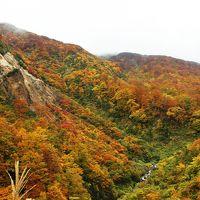 紅葉と山形ラーメンの旅