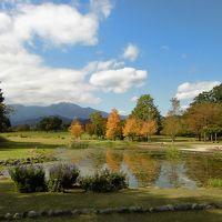 秋の大谷川(だいやがわ)公園