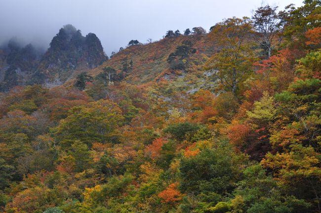 紅葉は何しろタイミング、谷川岳、一ノ倉沢と日光白根山、丸沼辺りに照準を合わせて、人出も少しは減るのを期待して、10月中旬の連休明け、13日火曜から2泊3日と決めました。<br /><br />それに、あの群馬ふるさと割り予約をゲット出来ました~!<br /> <br />10月13日火曜日 谷川岳ロープウェイで天神平、 一ノ倉沢へ<br /><br />      <br />