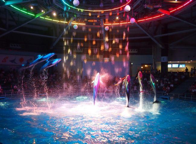 友だちの舞台が新馬場であったので、夜見終わったあと<br />乗換の品川で改札を出て夜の水族館を見に行こうと<br />【エプソンアクアパーク品川】へ行ってみました<br /><br />室内水族館のエプソン品川アクアスタジアムがリニューアルしたようです<br /><br />リニュ―アル前は行ったことないので比較は出来ないけど、、<br />初めて見たドルフィンパフォーマンスは、今まで行った水族館でも<br />見たことない演出で、すごく感動しました^▽^