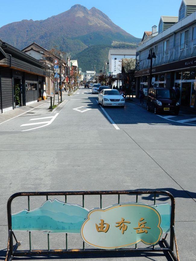 日本一の温泉県・大分県。<br /><br />偶然ラジオで聞いた、札幌国際大学観光学部 温泉学教授の松田先生の話を聞いて長湯温泉に行って以来、大分の温泉のファンになってしまいました。<br /><br />毎年約1回の恒例行事?である、大分の温泉めぐり。<br />今回もワンパターンで別府・湯布院・長湯です。<br />そして食事は、これもワンパターンで勿論とり天。<br /><br />土日1泊2日の弾丸だったため、大分市を観光できなかったのが残念です。