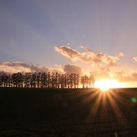 秋の道央 紅葉とグルメ旅 (1)ビブレのランチと美瑛の夕日
