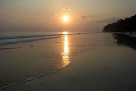 チョロ?チャロ?印度の旅:アンダマン・ニコバル諸島(ハヴロック)