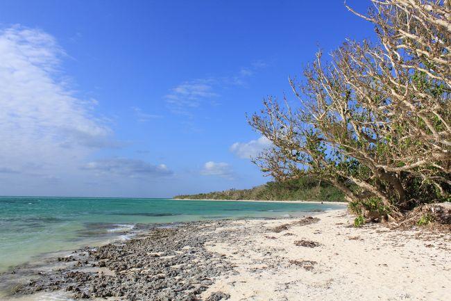 八重山諸島の石垣島、小浜島、西表島、竹富島を4泊5日で観光しました。<br />初日と最終日はほぼ移動のみと言うことで実質3日の旅です。<br />効率的に観光できるよう綿密なスケジュールを立てて出かけました。<br />あちこちで予想外のハプニングも有り、なかなか思い通りには行きませんでしたが、天気には恵まれて素晴らしい結婚30周年記念の旅となりました。<br /><br />4日目は平田観光さんのツアーに参加して西表島の仲間川マングローブクルーズ、由布島観光、その後フェリーで竹富島へ渡って水牛車観光、そして夕方に石垣島まで戻ってきました。
