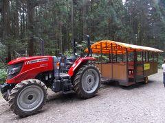 トラクターバスで森林浴