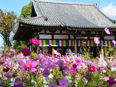 2015年10月 誕生日を大好きな大阪でお祝いしよぉ♪「サラベス」で朝食~コスモス寺「般若寺」へ~