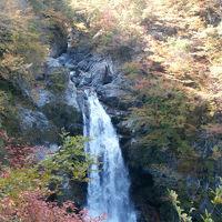 秋保大滝  滝壺へ紅葉の遊歩道~大滝不動尊観瀑台