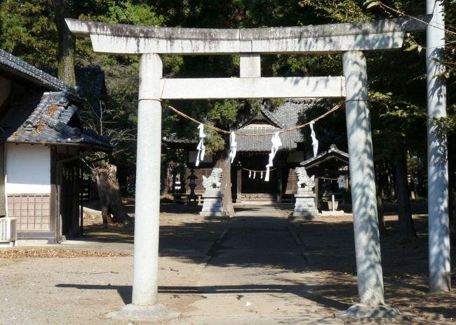 群馬県太田市の龍舞町の賀茂神社です。<br />半月ほど前に訪れた際に、上から2番目の横方向部材(「貫(ぬき)」というらしい)が柱の外側へ突き出ていない鳥居が気になったので、再度、訪ねてみました。<br /><br />ネット情報によると、<br />この鳥居は、<br />上の横方向部材(二重になっている上が「笠木」、下が「島木」という)が上に反っている(「反増」)ことと、「貫」が角棒で柱との結合部に楔がないことから「中山鳥居」と呼ばれるようです。<br /><br />この地名は「龍舞(りゅうまい)」ですが、駅名(東武鉄道小泉線)は「竜舞(りゅうまい)」です。辰年になると話題になり、切符が売れたりするようです。<br /><br />