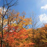 秋の道央 紅葉とグルメ旅 (3)秋深い層雲峡とフラテッロ・ディ・ミクニのランチ