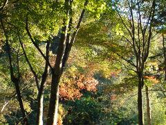 諏訪湖でランチ横谷峡温泉へ。帰路はほったらかし温泉立ち寄り湯