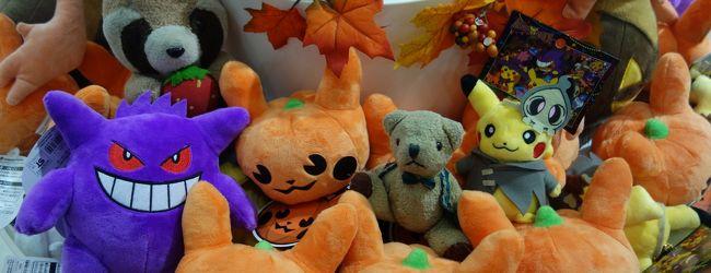 落葉の絨毯を歩こう! 2015年10月...