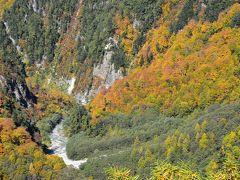 黒部ダム周辺の色鮮やかに染まる紅葉(富山)