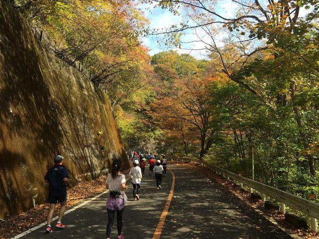 2015年10月 軽井沢マラソンフェスティバル(第6回サンスポ軽井沢リゾートマラソン+2015碓氷峠ラン184)②