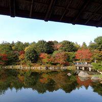 色づき始めた日本庭園の紅葉を見に、昭和記念公園へ